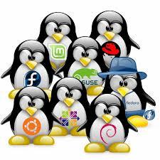 installazione linux roma